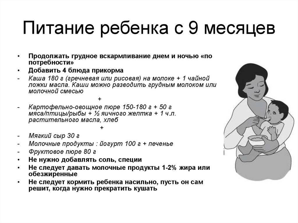 режим дня ребенка в 6 месяцев