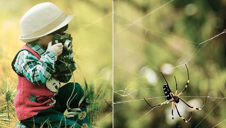 Ребенок панически боится насекомых до истерики - что делать?