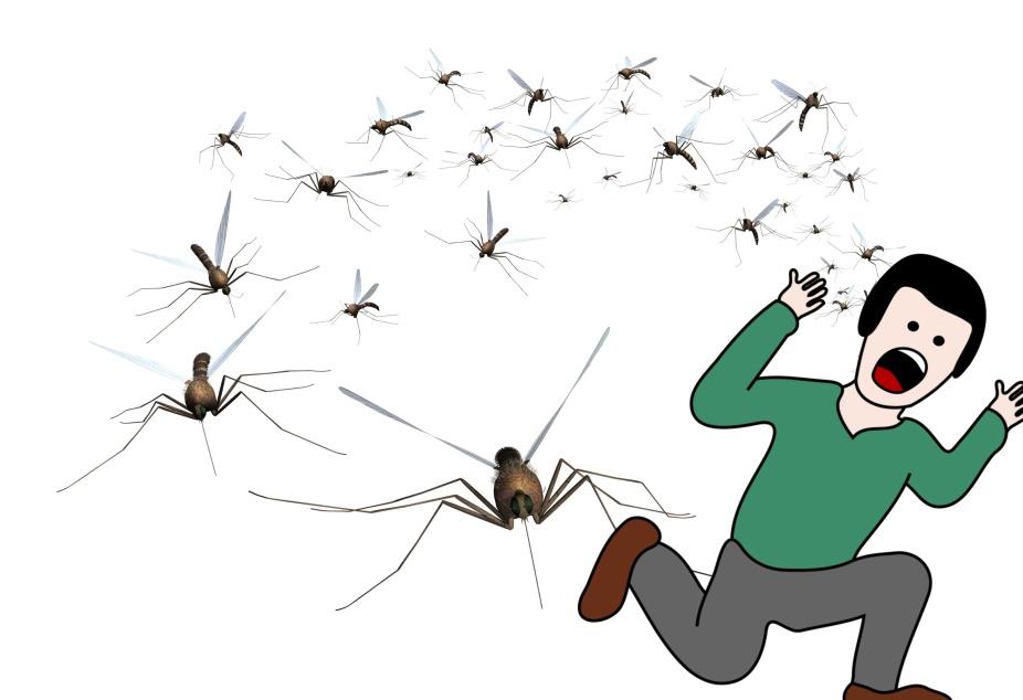 Что делать, если ребенок боится насекомых? 3 важных шага от ужаса к любопытству