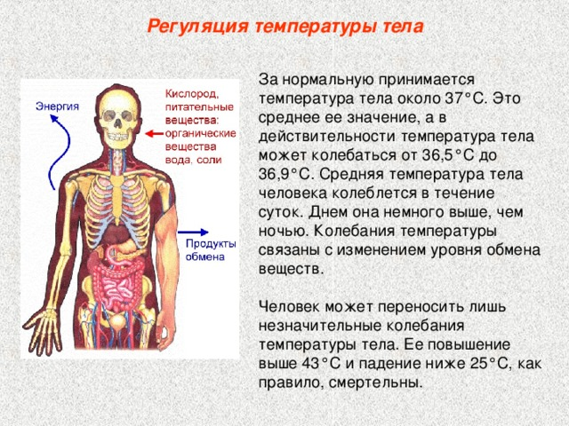 Низкая температура тела у ребенка