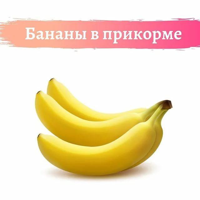 Банан в прикорме   уроки для мам