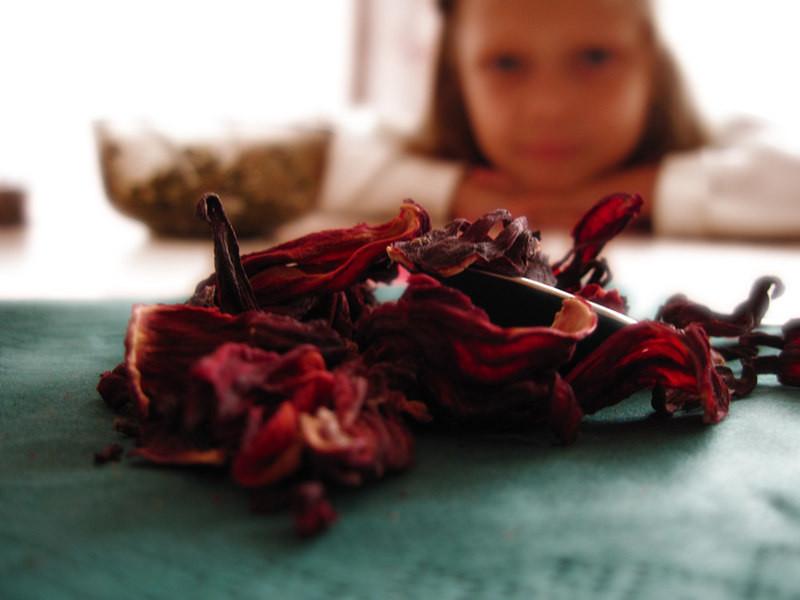 Чай каркаде: с какого возраста давать ребенку?