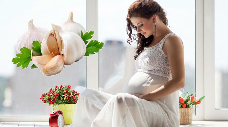 Чеснок при беременности: можно ли кушать на ранних сроках и перед родами?