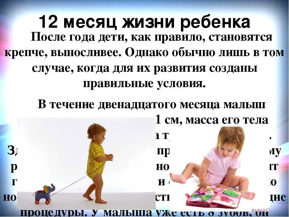 Развитие ребенка в 1 год и 6 месяцев: что должен уметь ребенок в этом возрасте