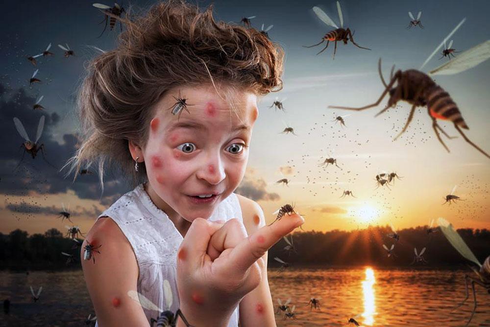 Ребёнок боится насекомых: что делать, способы устранения страха