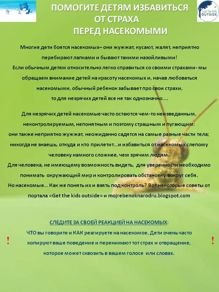 Ребенок боится насекомых | уроки для мам