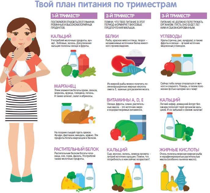 Как правильно питаться беременной по триместрам - советы от нмк
