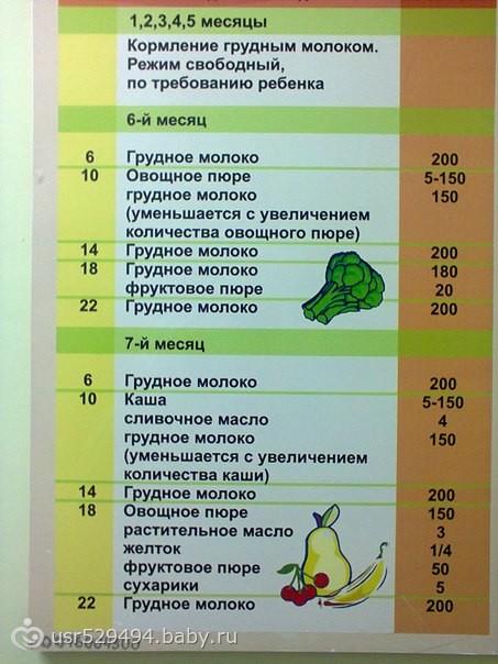 Режим дня ребенка до года - режим кормления и сна малыша до года - agulife.ru