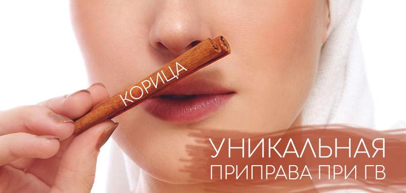 Корица - польза и вред для организма мужчины и женщины. полезные свойства и противопоказания
