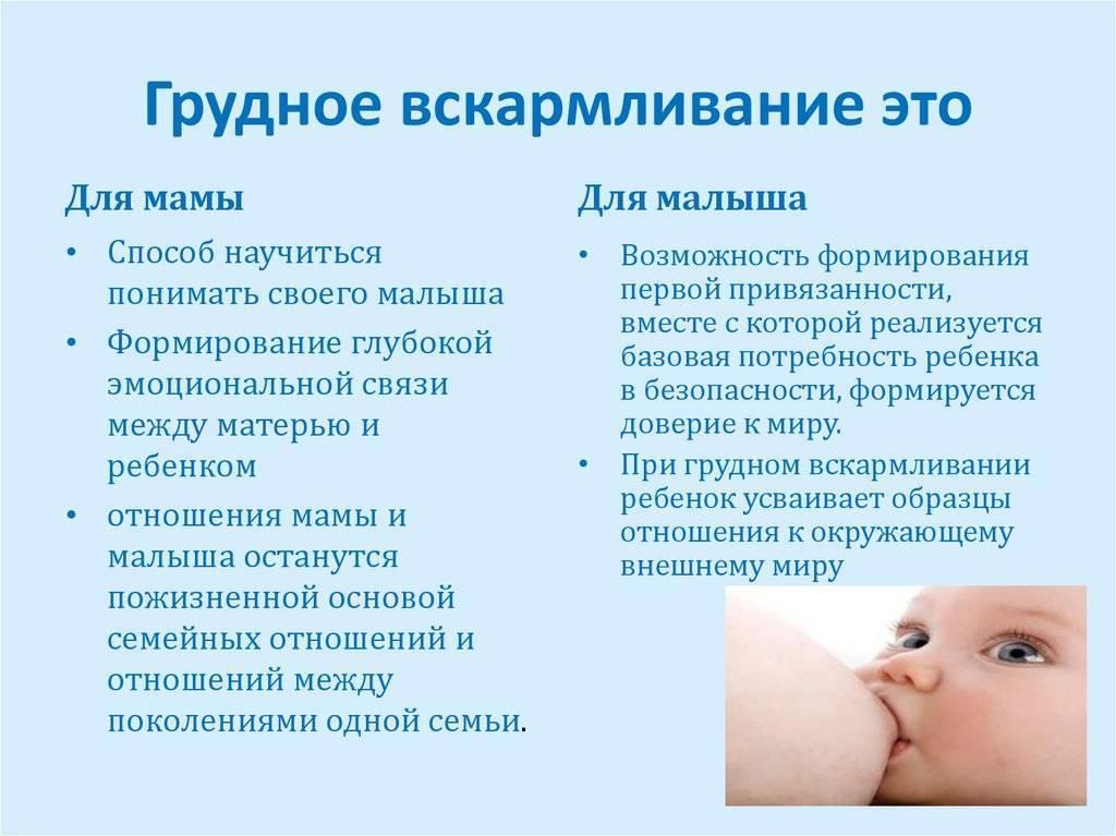 Кормление потребованию или порежиму: преимущества инедостатки
