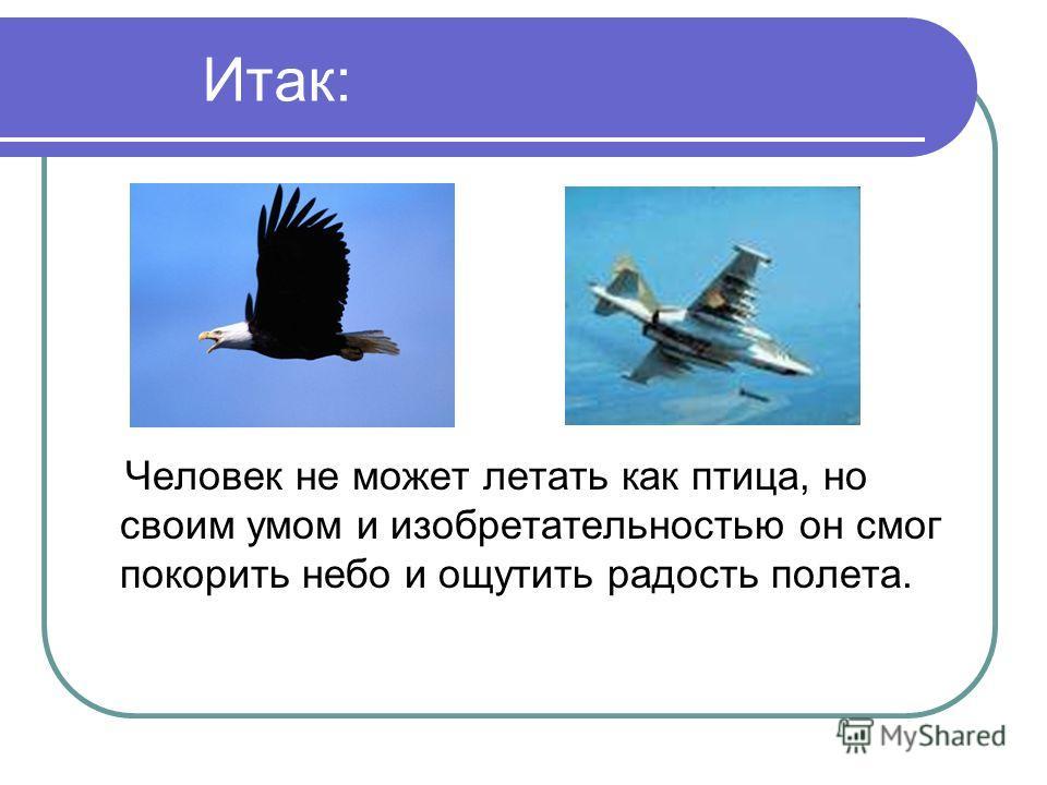 Благодаря чему летают птицы и насекомые. как объяснить детям, почему летают птицы.