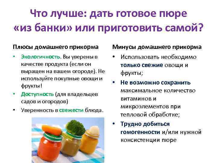 Экономный прикорм: готовить самой или покупать?