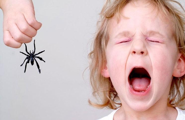Ребенок давит насекомых: возможные причины и способы решения проблемы, советы психологов