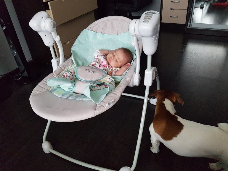 10 лучших электронных качелей для новорожденных - рейтинг 2020