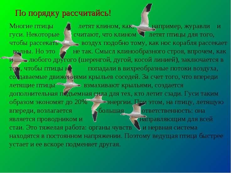 Конспект занятия «что мы знаем о птицах?». воспитателям детских садов, школьным учителям и педагогам - маам.ру
