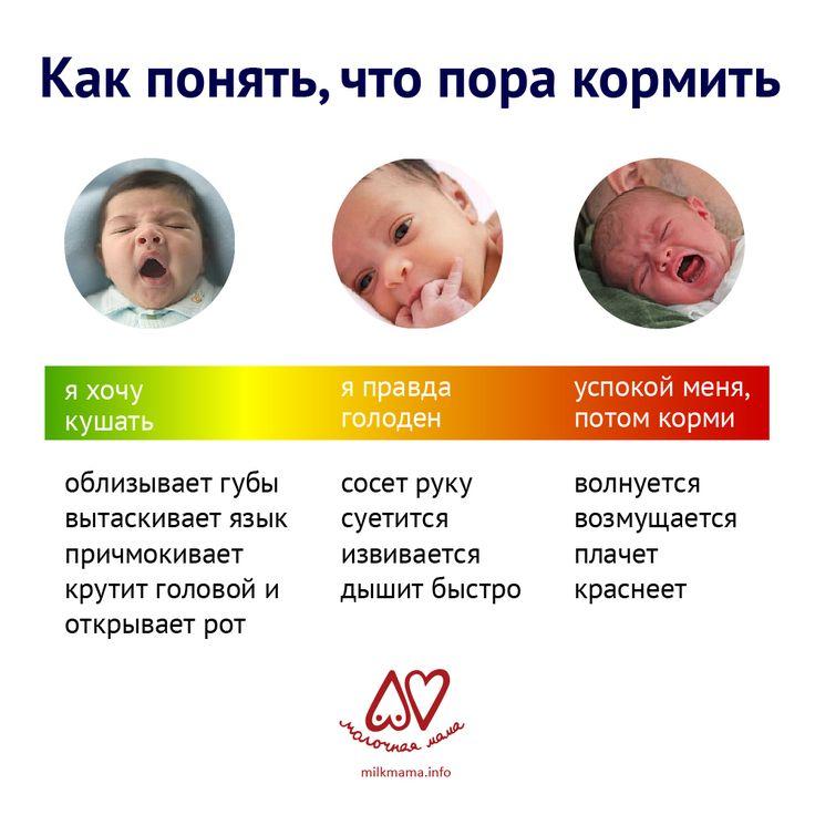 Как наладить грудное вскармливание после родов   кормление по требованию или по часам: как часто и до какого возраста