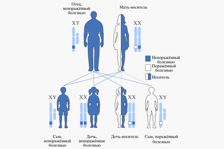 Что такое наследственные заболевания и как с ними быть?