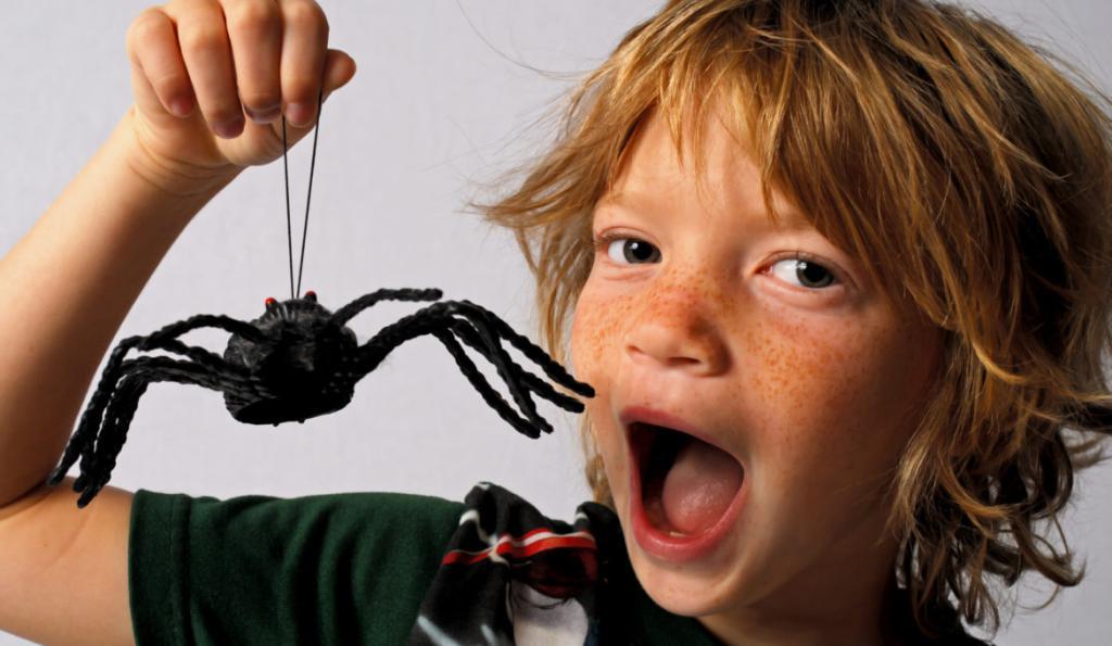 Как быть, если ребенок стал бояться насекомых?