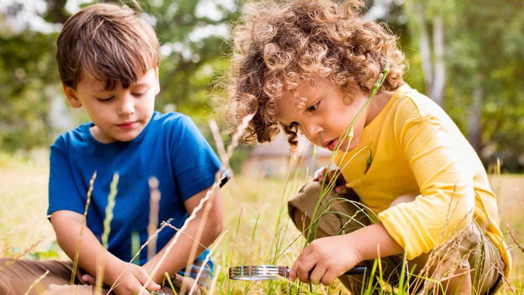 Ребенок боится мух | уроки для мам