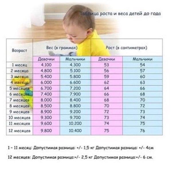 Как выглядит и что умеет малыш в 1 годик