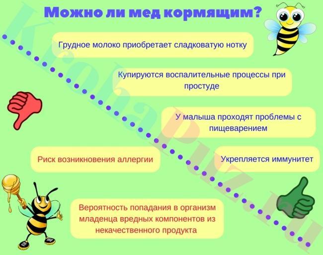 Можно ли мед кормящей маме?