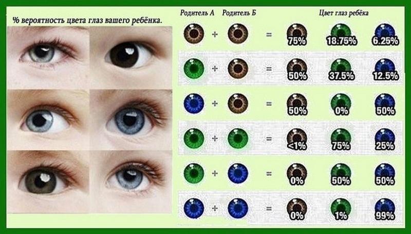 Как узнать цвет глаз ребенка до рождения | предсказать цвет глаз новорожденного