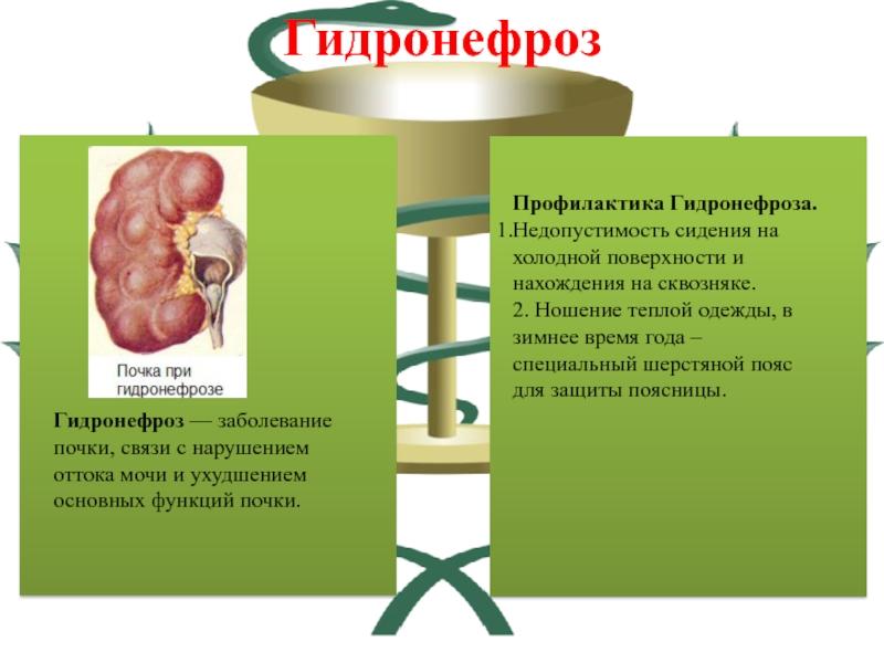 Почечная недостаточность – симптомы у мужчин и женщин, лечение в нии им. н.а. лопаткина.