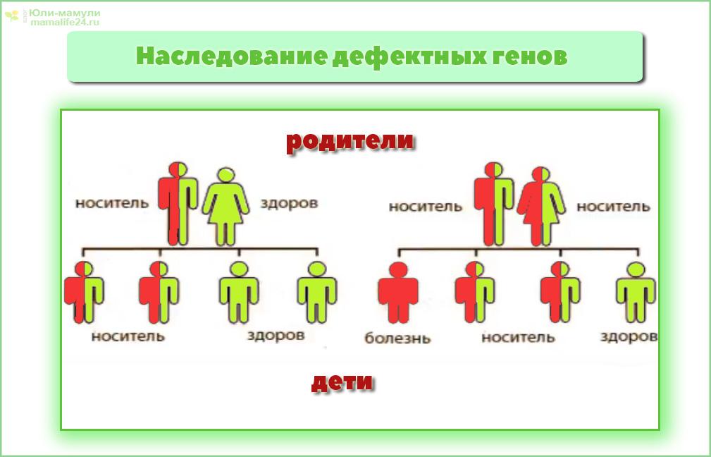 Шизофрения передается по наследству: механизм наследования и риски - энциклопедия ochkov.net