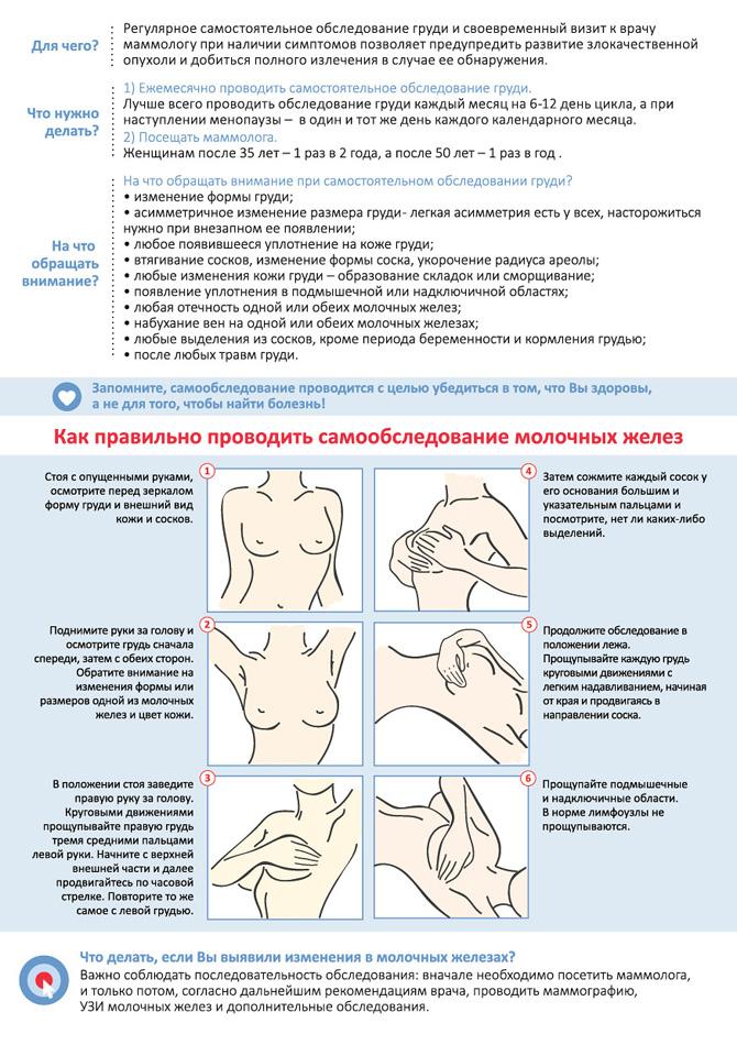 Асимметрия молочных желез при грудном вскармливании: причины и как с этим бороться