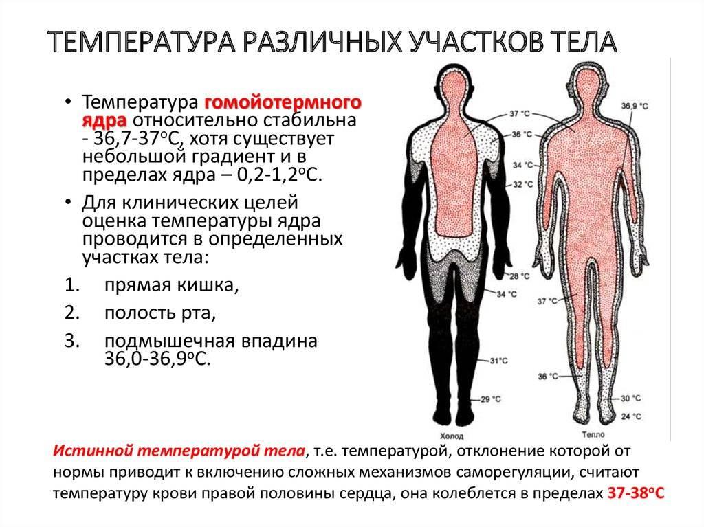Взрослым на заметку: почему держится пониженная температура у ребенка после орви?