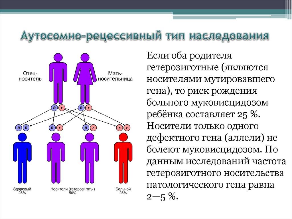 Что дети могут унаследовать исключительно от отца - медицинский портал medcentre24.ru